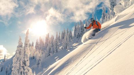 VetRewards Ski Tickets